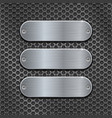 metal perforated background with oval brushed vector image vector image