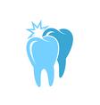 Oral hygiene vector image vector image