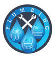 plumbing and running water vector image vector image