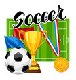 soccer or football background with ball and vector image