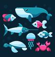 ocean salt sea fishes set vector image