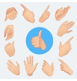 set of woman hands in various gestures isolated vector image
