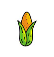 corn cartoon icon vector image vector image