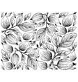 hand drawn background of gardenia erubescens fruit vector image vector image