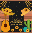 nightly background poster of festa junina with of vector image vector image