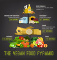 the vegan food pyramid vector image vector image