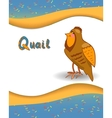 Alphabet letter Q and quail vector image