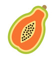 papaya flat icon fruit and tropical vector image