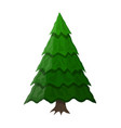 christmas tree spruce evergreen tree vector image vector image