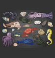 hand drawn different seafood colored on black vector image vector image