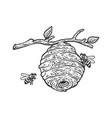 hive wild bees sketch vector image vector image