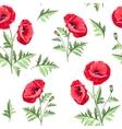 Pattern poppy flowers
