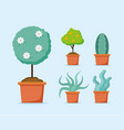 Plants decoration gardening flat design