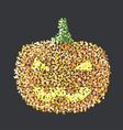 pumphin vector image vector image