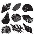 sea shells seashell silhouettes set vector image