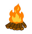 campfire isolated vector image
