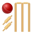 Cricket ball and stump vector image vector image
