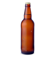 Dark bottle of beer vector image vector image