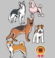 Dogs collection part 3 vector image vector image
