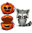 evil raccoon and halloween scary pumpkin face vector image vector image