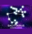 sagittarius constellation starry night sky zodiac vector image