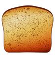 Bread texture vector image vector image