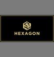 cg hexagon logo vector image vector image