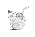 exotic coconut cocktail sketch hand drawn vector image vector image