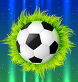 football with grass vector image vector image