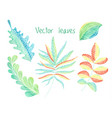 leaves set hand drawn eco collection vector image