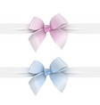 pink and blue pastel colors bows with ribbons vector image
