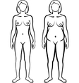set of female body types vector image