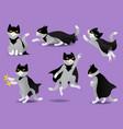 set superhero cat in black mask and cloak vector image