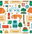 Camping equipment seamless pattern vector image
