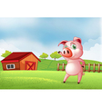 A pig at the farm pointing the barn house vector image vector image