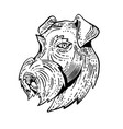 airedale terrier head etching black and white vector image vector image