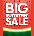 big summer sale on watermelon surface texture vector image vector image