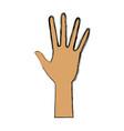 human hand five finger palm open gesture vector image vector image