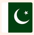 pakistan square flag button social media vector image