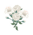 set of white roses and tulips vector image vector image