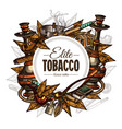 tobacco and smoking background vector image vector image