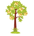 Tree with coin vector image vector image