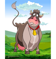cartoon surprised funny cow on a green meadow vector image