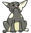 french bulldog cartoon vector image vector image