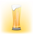 Glass of beer of beer vector image