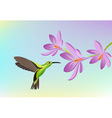Greeting card with humming-bird vector image