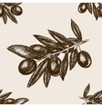 Olive branch sketch seamless pattern vector image vector image