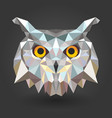 owl bird animal 3d low poly white vector image vector image