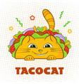 tacocat happy character mexican fastfood taco vector image vector image
