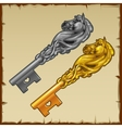 Two magic silver and gold key with a horse head vector image vector image